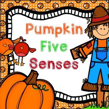 Pumpkin Five Senses
