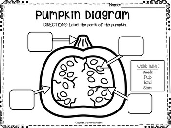 Pumpkin Patch Bash!