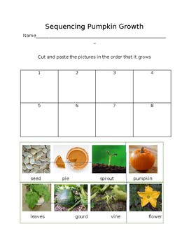 Pumpkin Growth Sequencing Formal Assessment