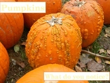 Pumpkin I Can See Ppt