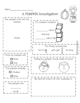 Pumpkin Investigation!