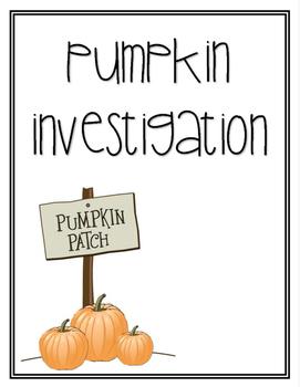 Pumpkin Investigation // LIFE CYCLE //