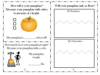 Pumpkin Investigation Booklet