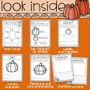 Pumpkin Investigation Journal for Kindergarten