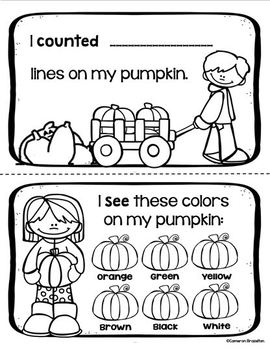 Pumpkin Investigation Math Science Mini Book Activity