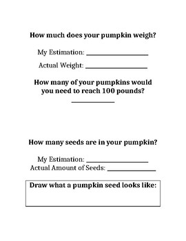 Pumpkin Investigation Notebook