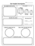 Pumpkin Investigation Recording Sheet