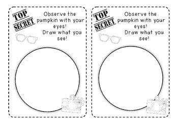 Pumpkin Investigation Student Journal