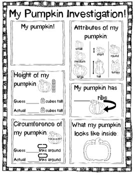 Pumpkin Investigation Worksheet