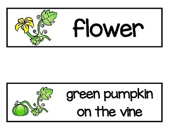 Pumpkin Life Cycle Vocabulary Word Cards