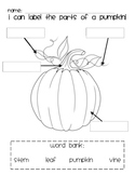 Pumpkin Labeling
