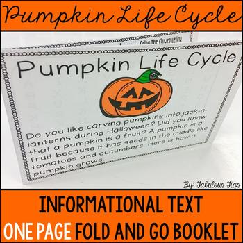 Pumpkin Life Cycle $1