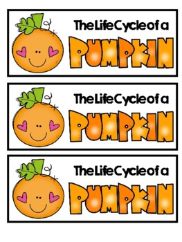 Pumpkin Activities: Pumpkin Life Cycle Flip book