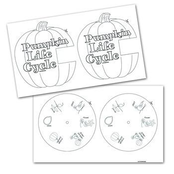 Pumpkin Life Cycle, Pumpkin Craft and Fall Activities
