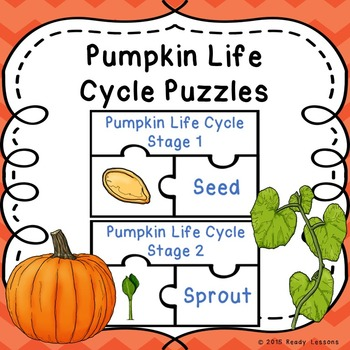Life Cycle of a Pumpkin Activity Puzzles