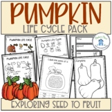 Pumpkin Life Cycle Activities and Worksheets