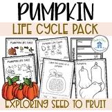 Pumpkin Life Cycle Activities and Worksheets