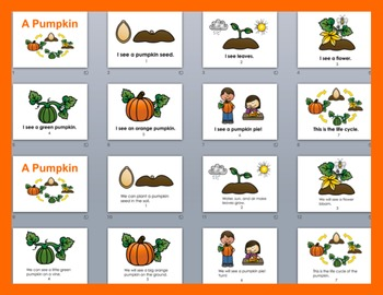 Pumpkins Life Cycle PowerPoint -3 Reading Levels + Illustrated Vocabulary Slides
