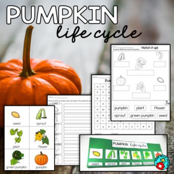 Pumpkin Life Cycle Activities