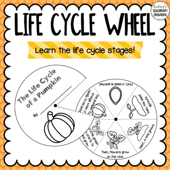 Pumpkin Life Cycle Activities!! Great for science Centers!