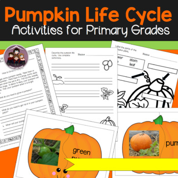 Pumpkin Life Cycle Activities for Primary Grades