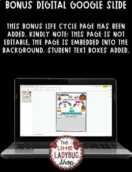 Pumpkin Life Cycle Science • Teach- Go Pennants™