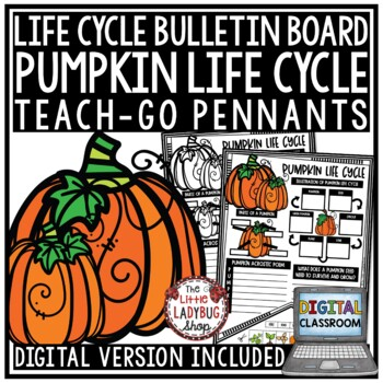Pumpkin Life Cycle Activity • Teach-Go Pennants