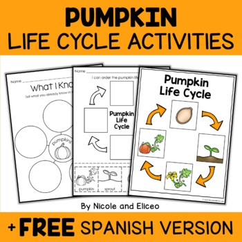Pumpkin Life Cycle Activity