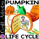 Pumpkin Craft   Life Cycle of a Pumpkin Craftivity   From
