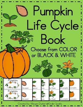 Pumpkin Life Cycle Book