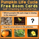 Pumpkin Life Cycle Boom Cards Free (Life Cycle Stages of a