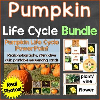 Pumpkin Life Cycle Bundle (PowerPoint, Cards, Craft, Printables) Real Photos