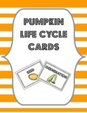Pumpkin Life Cycle Cards {Flashcards, Sorting Cards or Bulletin Board Labels}