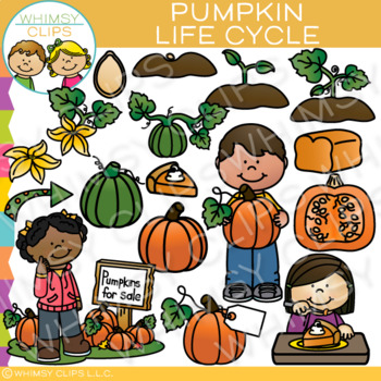 Pumpkin Life Cycle Clip Art
