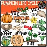 Pumpkin Life Cycle Clip Art Set {Educlips Clipart}