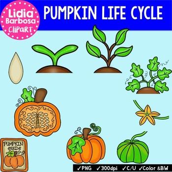Pumpkin Life Cycle { Clip Art for Teachers }