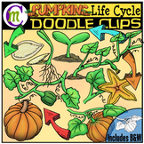 #JulyTptClipLove Pumpkin Life Cycle Clipart