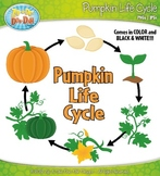 Pumpkin Life Cycle Clipart {Zip-A-Dee-Doo-Dah Designs}