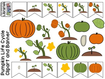 Pumpkin Life Cycle Clipart for Commercial Use