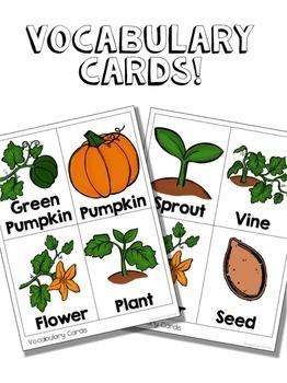 Pumpkin Life Cycle | Pumpkins | Halloween