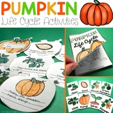 Pumpkins Life Cycle | Halloween