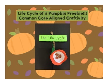 Pumpkin Life Cycle Common Core Aligned Craftivity