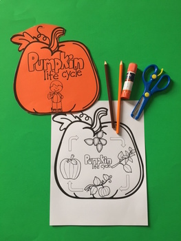 Pumpkin Life Cycle Craft 2