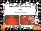 Pumpkin Life Cycle Craft and Labeling Activity