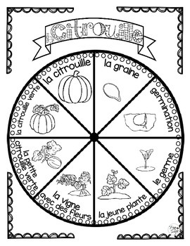 Pumpkin Life Cycle Craftivity ~ French ~ La citrouille