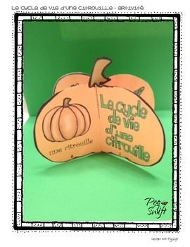 Pumpkin Life Cycle Craftivity in French ~ Le cycle de vie d'une citrouille