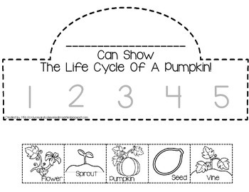 image relating to Pumpkin Life Cycle Printable named Pumpkin Existence Cycle Crown In addition Sequencing Playing cards