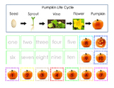 Pumpkin Life Cycle Cut and Paste Matching Numbers 1 to 10 Sight Words 1page