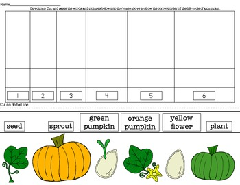 Pumpkin Life Cycle Cut and Paste Sequencing
