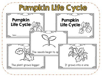 Pumpkin Life Cycle Emergent Reader